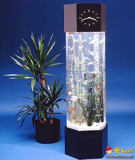aquarios-personalizados-13