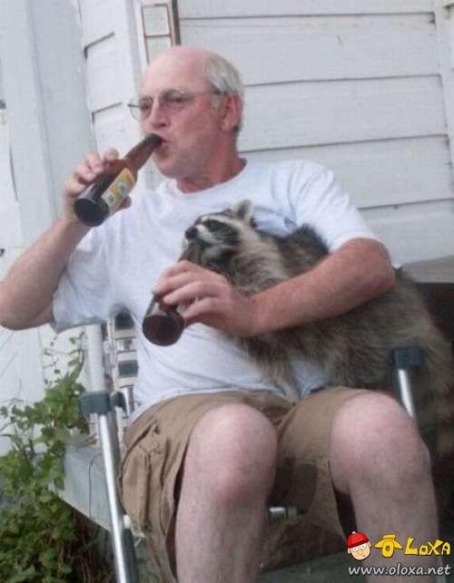 drunk-animals-23