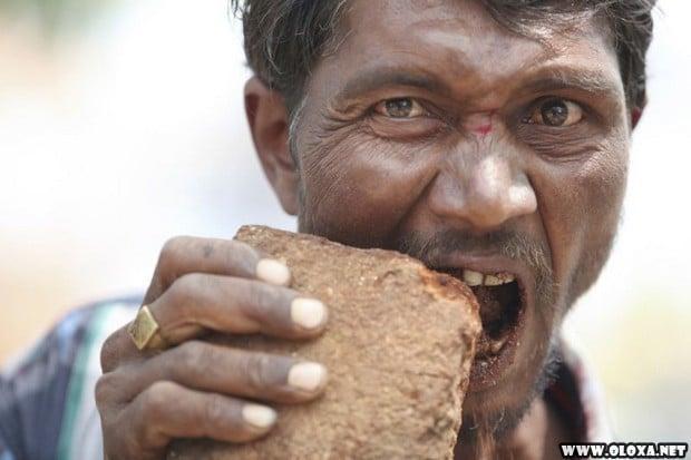 O comedor de tijolos