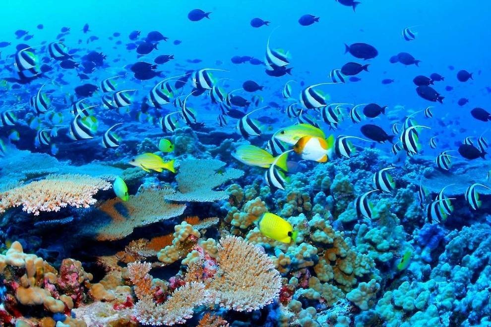 09-mar-praia-mais-lindo-da-terra