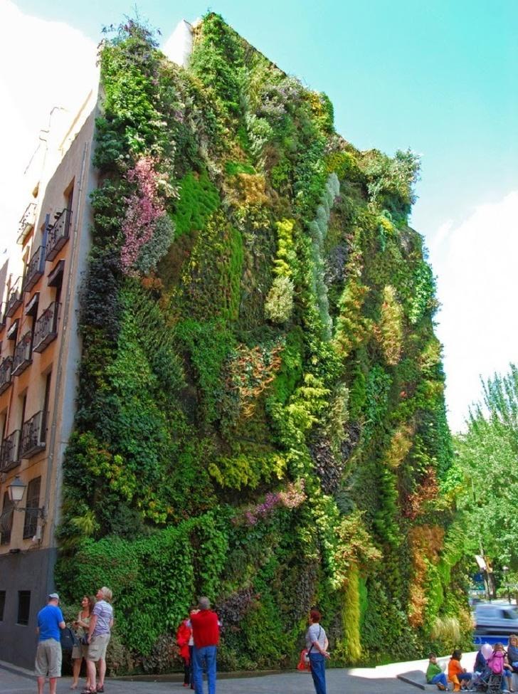 Conheça algumas casas que as plantas tomaram conta 7