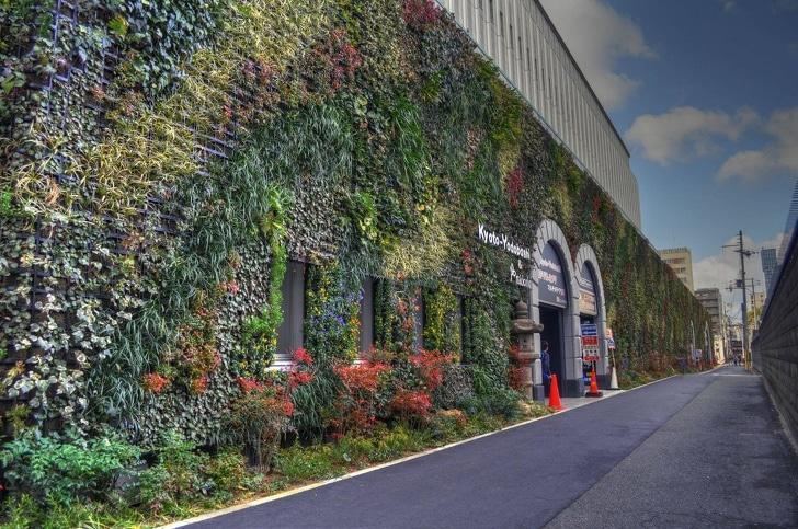 Conheça algumas casas que as plantas tomaram conta 10