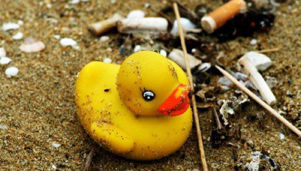 Coisas bizarras encontradas em praias que você não sabia 9
